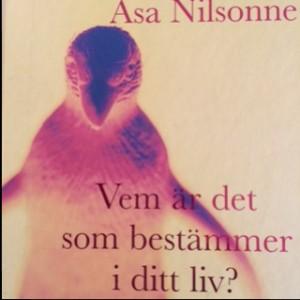 Nilsonnes bok