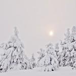 vinter-150x150